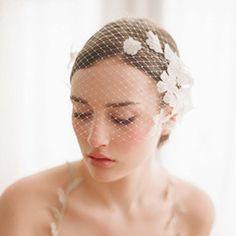 Lace embellished bandeau birdcage veil
