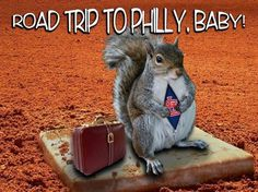 rally squirrel!
