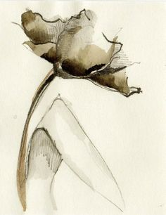 FLOWERS - Drawings with Ink, pencil and acrylic on acid free heavyweight paper by Cristina Ripper