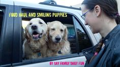 Food Haul And Smiling Puppies | Gay Family Daily Fun