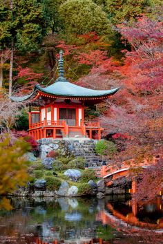 Best Things to See and Do in Tokyo|Pinterest:@theculturetrip