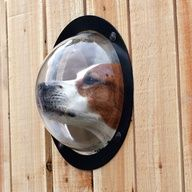 The Dog Observation Porthole - for keeping an eye on the neighborhood... This is hilarious!!