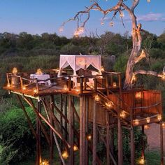 This exotic hotel, called Lion Sands Game Reserve, is located in South Africa and is comprised of three tree houses that function as natural hotel rooms. Kruger National Park, National Parks, Sand Game, Treehouse Hotel, Treehouse Vacations, Cool Tree Houses, Sleeping Under The Stars, Paradise On Earth, Game Reserve