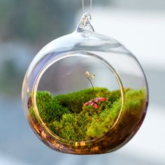 Imagine a tree filled with these mini terrarium ornaments....Amazing!