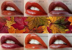Fall colors #senegence #lipsense