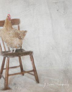 Jamie Heiden Mary, A Portrait