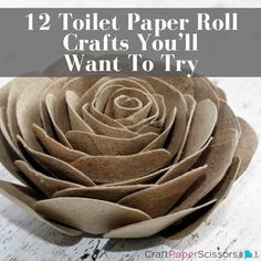 Though certainly not a new craft idea, toilet paper roll crafts are still one of the most popular cr