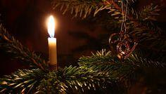 Natale è poesia: Quando disfare l'albero di Natale?