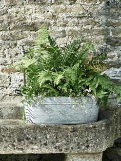 Aged Zinc Trough Planters For Sale, Zinc Planters, Trough Planters, Outdoor  Planters,