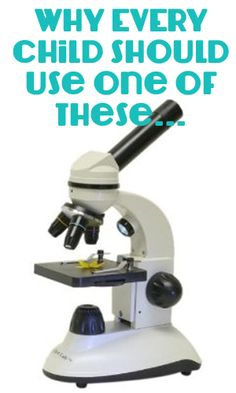 Every child should use a microscope! Explore leaves, bugs, rocks, etc