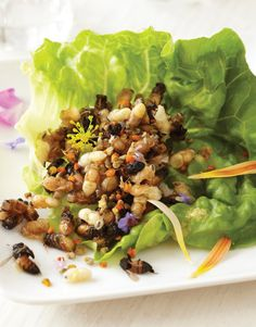 Three Insect Recipes to Help the Arthropods Go Down