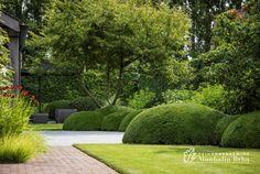 Find the best garden designs & landscape ideas to match your style here. Lush Garden, Garden Pool, Tropical Garden, Water Garden, Modern Garden Design, Garden Landscape Design, Contemporary Garden, Modern Landscaping, Garden Landscaping