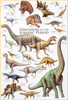 An awesome poster of Dinosaurs from the Jurassic Period! Includes the Stegosaurus, Brachiosaurus, Archaeopteryx, and more! Check out the rest of our amazing selection of Dinosaur posters! Need Poster Mounts. Dinosaur Posters, Dinosaur Art, Dinosaur Fossils, Dinosaur Photo, Dinosaur Light, Dinosaur Pictures, Dinosaur Crafts, Animal Posters, Prehistoric Dinosaurs