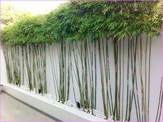 balkon sichtschutz aus bambus – praktische und originelle idee, Best garten ideen
