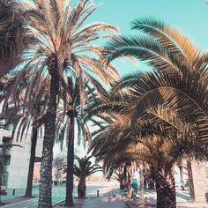 Meeting New People, Summer Vibes, Travel, Instagram, Viajes, Destinations, Traveling, Trips