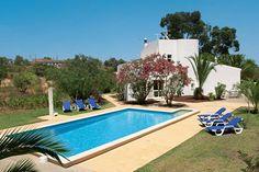 Eucalypto in Carvoeiro, Algarve
