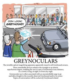 Greynoculars
