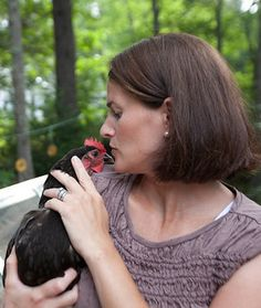 Tilly's Nest: How to Train a Chicken. Great Blog with tips on preparing chickens for winter, building coops, keeping them healthy etc.