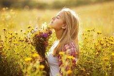 Beautiful girl among the wildflowers in summer stock photo