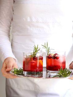 Cranberry Gin Fizz Cocktail