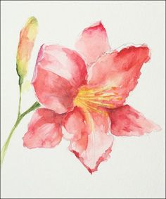 watercolor-Lily-Second-phase 0f an expressive technique
