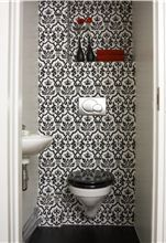 Love this idea for a small toilet