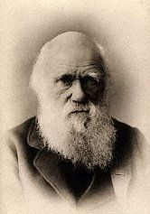 """Charles Darwin 1809-1882   An english naturalist who was famous for his famous theory of """"natural selection"""". As a young scientist he set sail on the voyage of the Beagle in 1831 and came back with observations on the varieties of fossils and living animals which made him question the Bible's story of creation. His findings were published in """"The Origin of Species"""" in 1859. This theory caused a real stir and was sold out straight away."""
