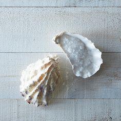 note: a pretty oyster salt cellar