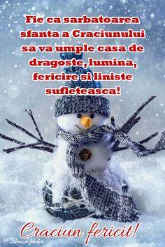Fie ca sărbătoarea sfânta a Crăciunului să vă umple casa de dragoste, lumină, fericire și liniște sufletească!