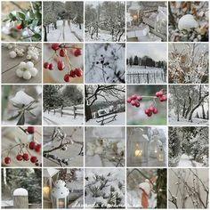 Small winter