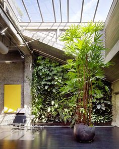 VERY cool courtyard / living wall / sunroom