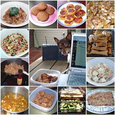 How to Make Homemade Food For Dogs