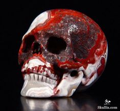 Skull made from Crazy Lace Agate Crane, Skull Artwork, Human Skull, Crazy Lace Agate, Crystal Skull, Rocks And Gems, Skull And Bones, Rocks And Minerals, Stones And Crystals