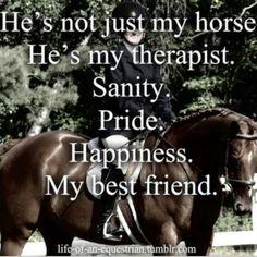 I miss having a horse