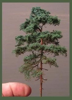 make tiny trees (Dutch language)