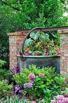An old pickling pot holds elephant's ears, 'Freckles' coleus, and 'Dragon Wing' begonias.