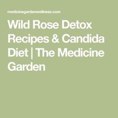 Wild Rose Detox Recipes & Candida Diet | The Medicine Garden