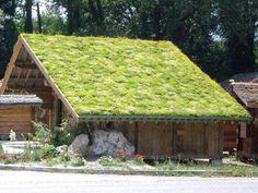 groendak.jpg http://www.hebbes.be/artikel/hoe-een-groendak-aanleggen-9-tips?utm_source=facebook&utm_medium=content&utm_campaign=post