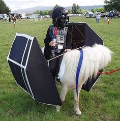 Horse dressed as star wars spaceship  | 10 Horses Dressed as Well-Known Movie Characters