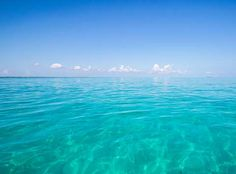 Image result for ABACO ISLAND Turquoise Water, Airplane View, Paths, Culture, Beach, Islands, Photography, Travel, Outdoor