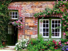 Stone house and climbing roses