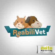 Logo Cliente: Reabilivet