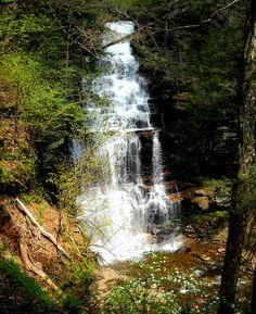 Canoga      The tallest waterfall at Ricketts Glen State Park, Pennsylvania, USA