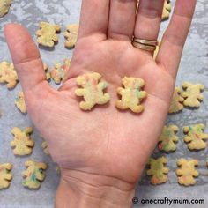 Homemade Tiny Teddy Biscuits Recipe, need to try this with substitions. Biscuit Cake, Biscuit Recipe, Bear Recipe, Lunch Box Recipes, Snack Recipes, Lunchbox Ideas, Toddler Meals, Kids Meals, Bellini Recipe