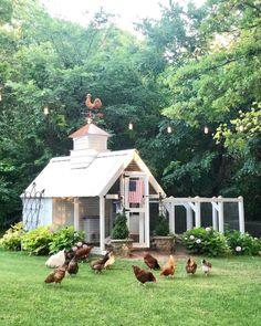 Chicken Coop Garden, Cute Chicken Coops, Chicken Coop Designs, Chicken Coop Plans, Beautiful Chickens, Beautiful Farm, Outdoor Sheds, Outdoor Spaces, Farms Living