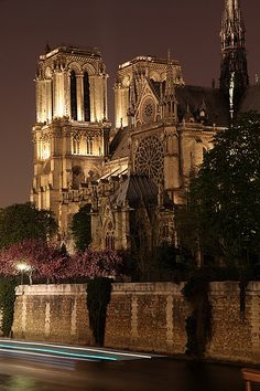France, Paris, Notre-Dame at night. Places Around The World, Oh The Places You'll Go, Places To Travel, Places To Visit, Around The Worlds, Paris Travel, France Travel, Beautiful World, Beautiful Places