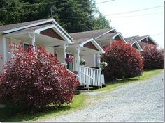 Book Alert Bay Cabins, Alert Bay on TripAdvisor: See 42 traveler reviews, 53 candid photos, and great deals for Alert Bay Cabins, ranked #1 of 1 hotel in Alert Bay and rated 4.5 of 5 at TripAdvisor.