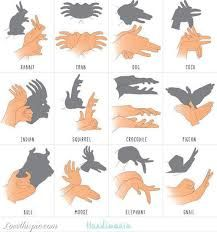 hand shadows - Google Search