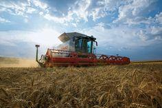 Foto von Thorsten Schmidtkord für die CLAAS Landmaschinen Broschüre. http://expose-photo.de/thorsten-schmidtkord/investitionsgueter/