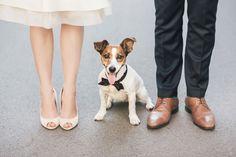 Emma+Hund+Hochzeitsfotos